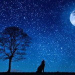 ペルセウス座流星群の方角・時間と2016年は沢山流れ星が見れるチャンス!