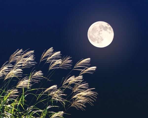 中秋の名月 十五夜