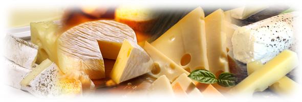 チーズフェスタ2016