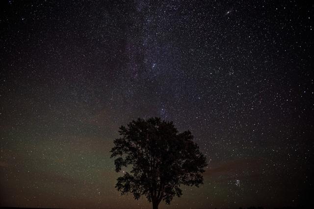 こと座流星群2017の方角と時間のピークは?デートで見るならココがおすすめ!