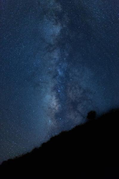 こと座流星群の方角とピーク時間は?愛知はどこで見るのがおすすめ?