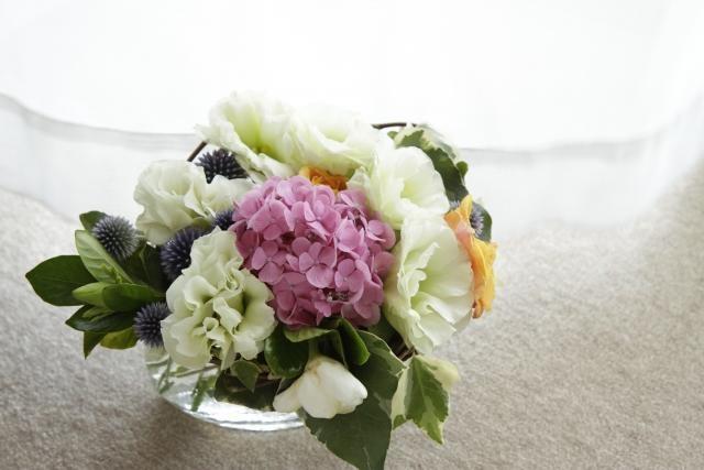 紫陽花,あじさい,梅雨,プレゼント,おすすめ,花,名前,花言葉,結婚式