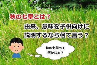 秋の七草とは?由来、意味を子供向けに説明するなら何て言う?